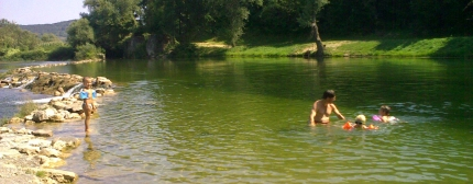 Swimming in the river in the afternoon