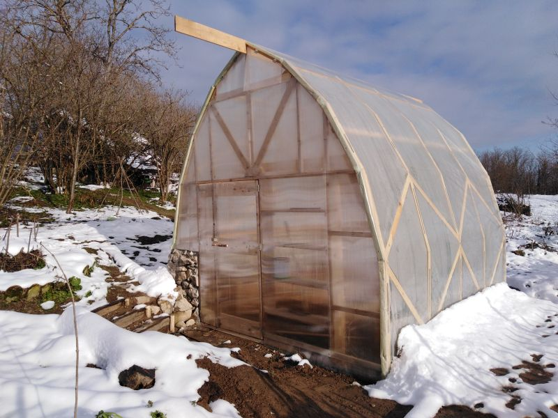 Bogata Suma's permaculture greenhouse in the garden