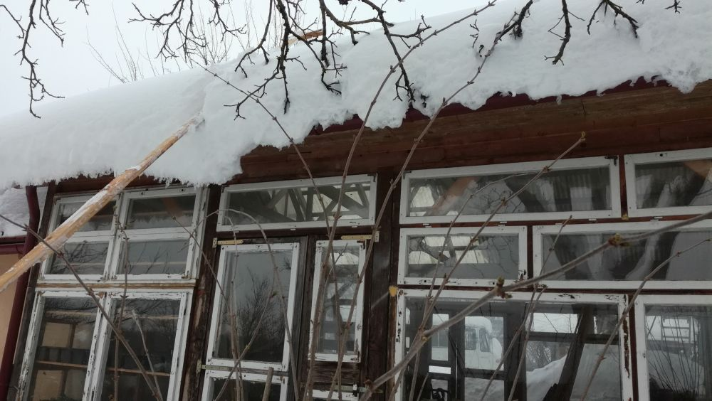 Glasshouse with recycled windows from the school