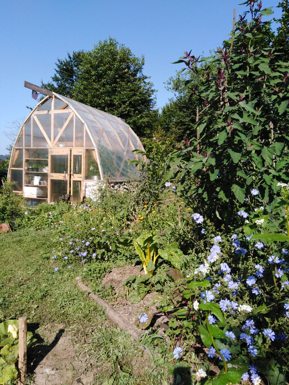 Greenhouse in the permaculture garden