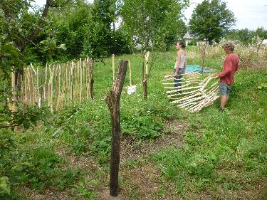 volunteering on a permaculture farm